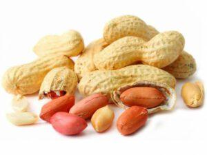 amendoim-com-casca