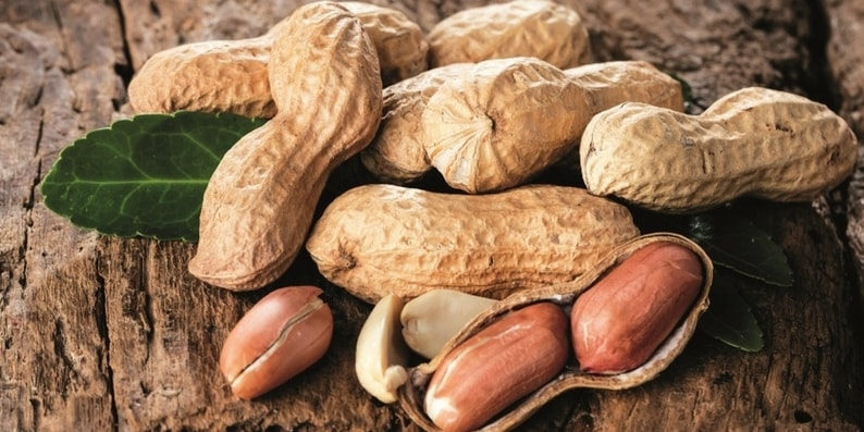 amendoim-com-casca-allnuts