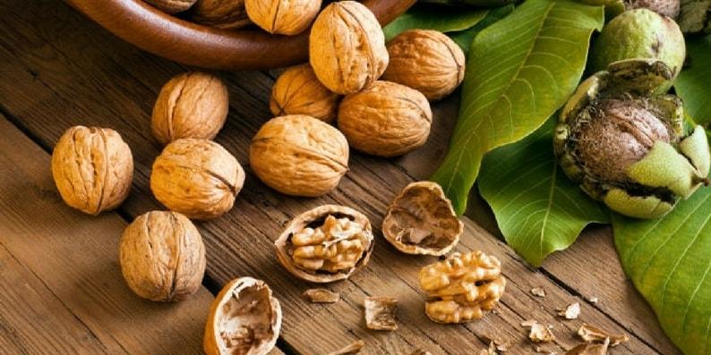 nozes-com-casca-allnuts