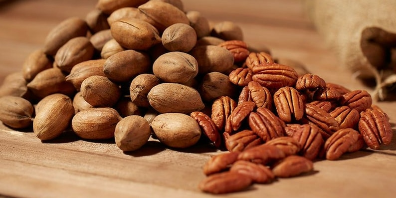 nozes-de-pecan-all-nuts-min (1)